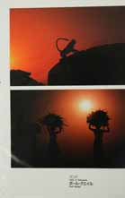sunset silhouette India
