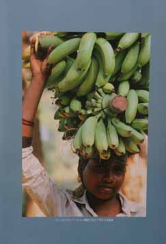 banana using ones head Gujurat State India